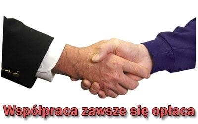 konsultacje-współpraca